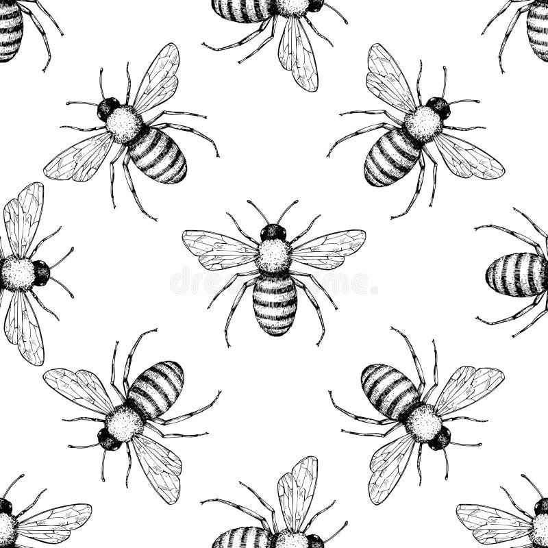 Bijen vector naadloos patroon Hand getrokken insectachtergrond royalty-vrije illustratie