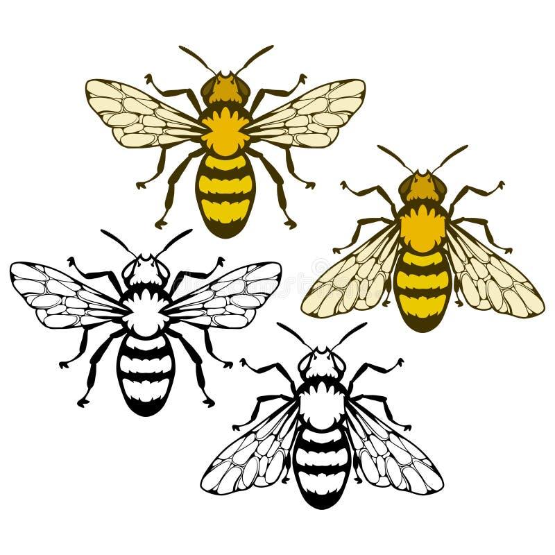 Bijenembleem, honingbij op witte achtergrond, hand getrokken schets van bij royalty-vrije stock foto