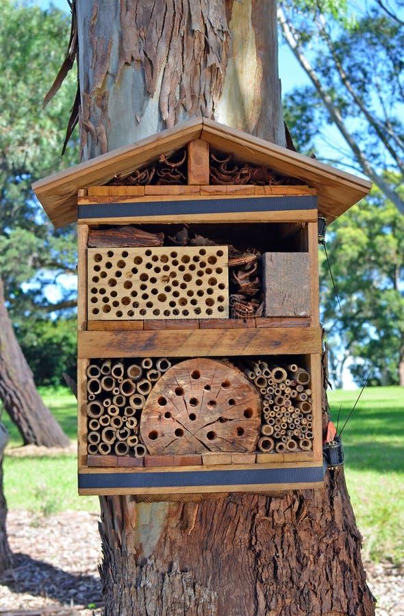 Bijenhotel voor solitaire inheemse bijen royalty-vrije stock foto's
