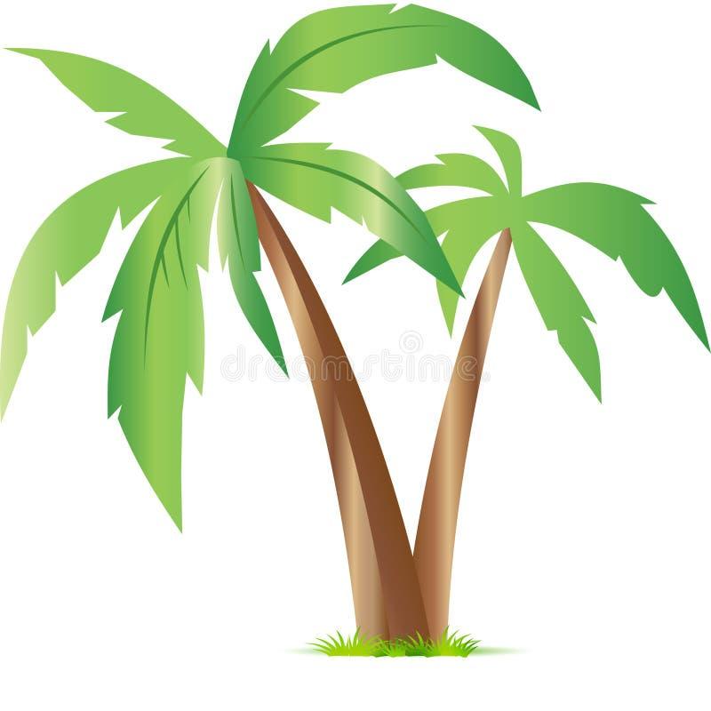 Bijou des tropiques photographie stock libre de droits