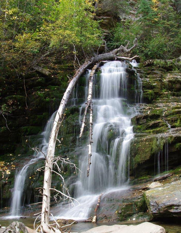 Bijoux Falls arkivfoto