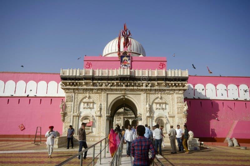 BIKANER, RAJASTHAN, INDIEN, im November 2018, eifriger Anhänger bei Karni Mata oder der Tempel von den Ratten stockbild