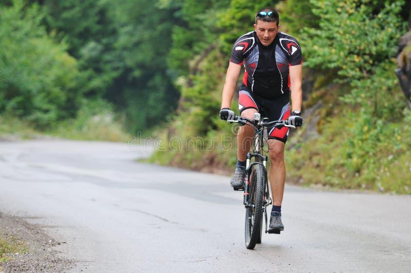 Bike горы стоковые изображения rf