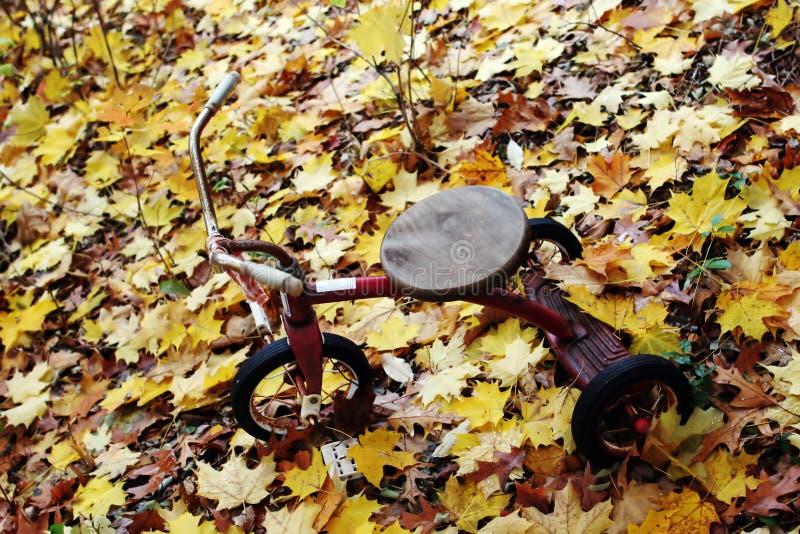 Download Bike Stock Image - Image: 1423461