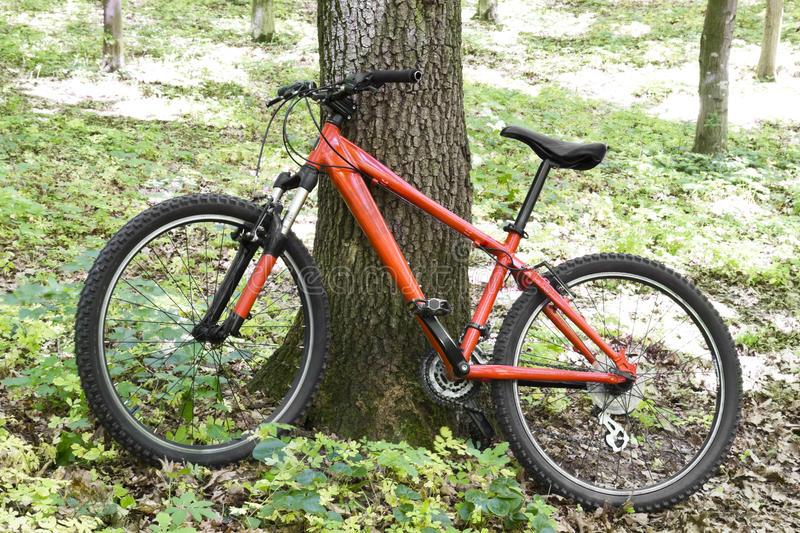 Bike. Red bike in the green forest stock photos