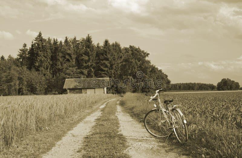 Download Bike And Ancient Farmhouse On Wheat Farmland Stock Image - Image: 23382461