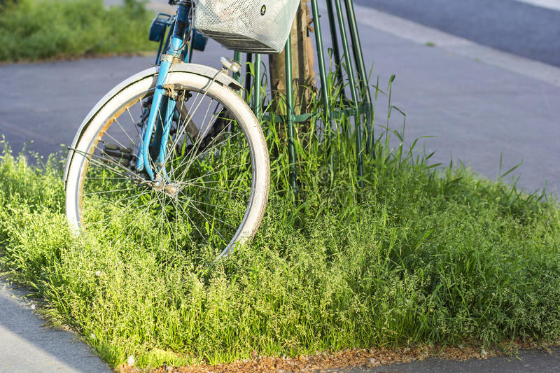 A bike with a basket on the green grass in the city royalty free stock images