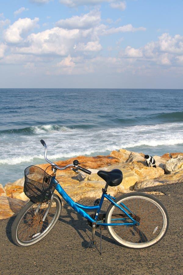 Download Bike on a beach stock photo. Image of biking, cycling - 22038686
