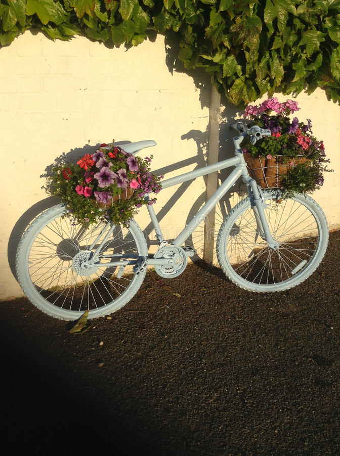 Bike in bloom stock photography