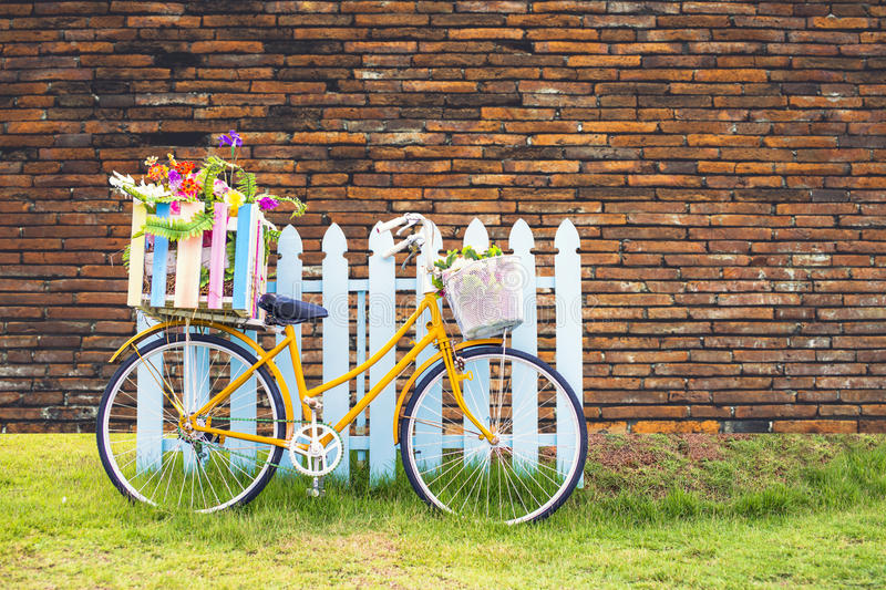 Bike carrying flowers. royalty free stock photos