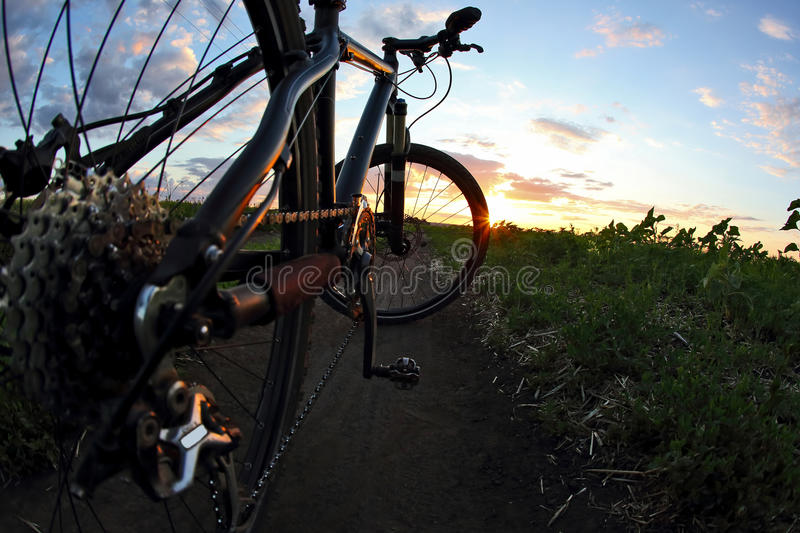 Bike close-up on the trail at sunset stock images