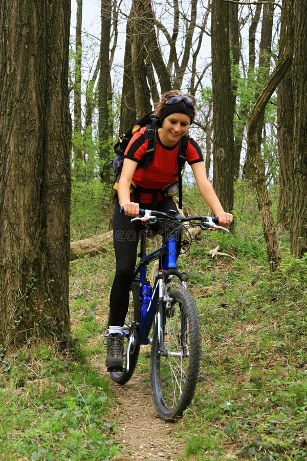 Bike en el bosque fotos de archivo