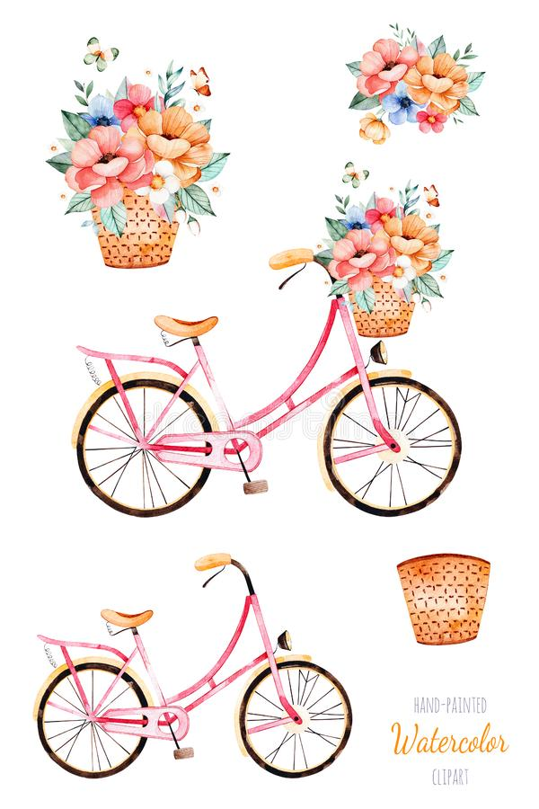 Bike with flowers in basket,bouquet royalty free illustration