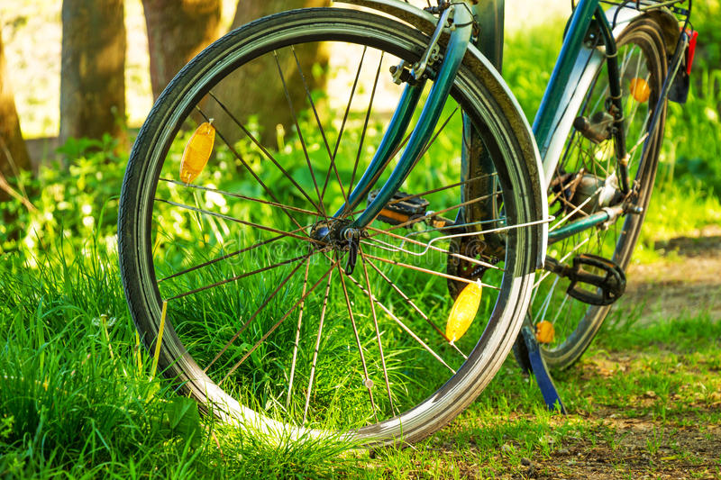 Bike in the forest. Stop the bike in the forest royalty free stock images