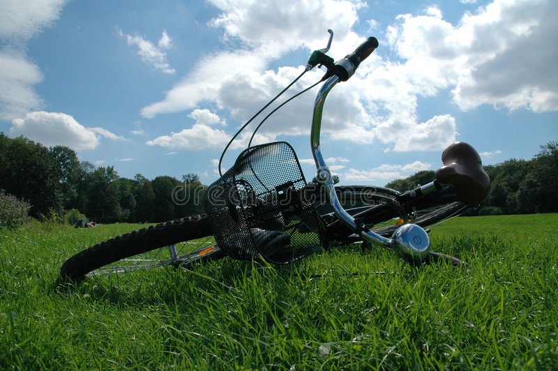 Download Bike in the Grass stock photo. Image of gardens, fresh - 1422202