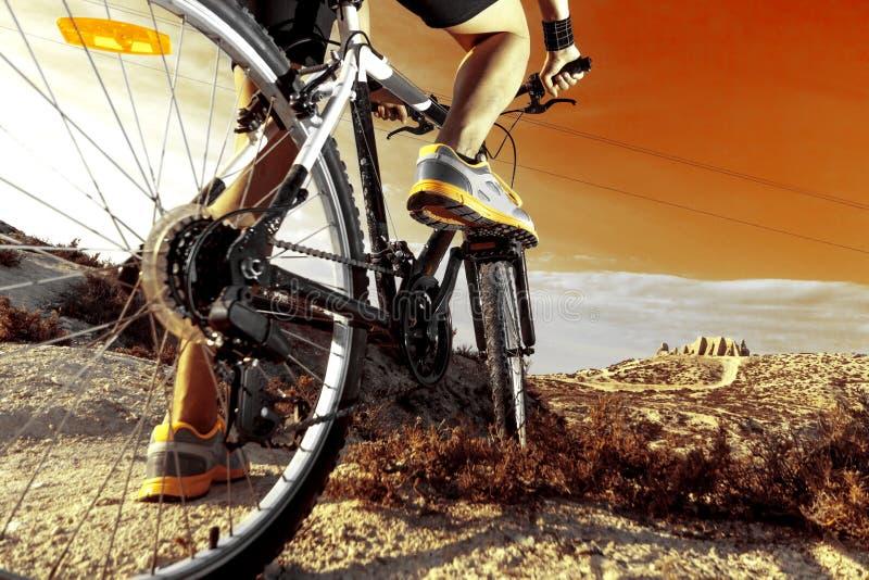 bike la prospettiva biking della montagna delle mani della foresta del fuoco del campo di profondità del ciclista poco profonda S fotografia stock