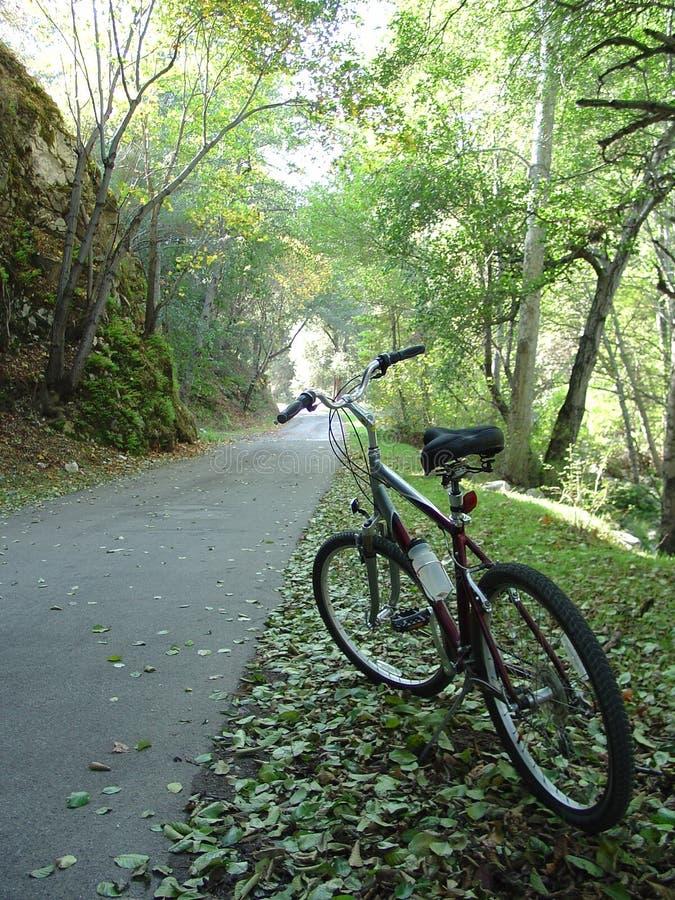 Bike la traccia in indicatore luminoso fotografia stock