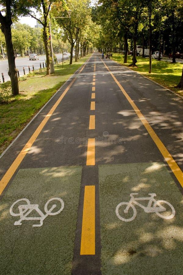 Download Bike lane stock photo. Image of arrow, empty, healthy - 6650582