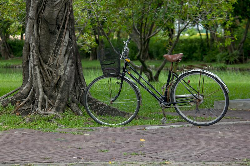 Bike parked near the tree. Old black bike parked near a tree in the park stock photos