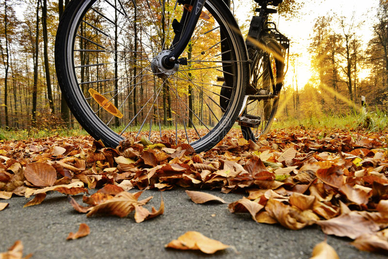 Bike standing on the bike path. Autumn leaves on bicycle path stock images