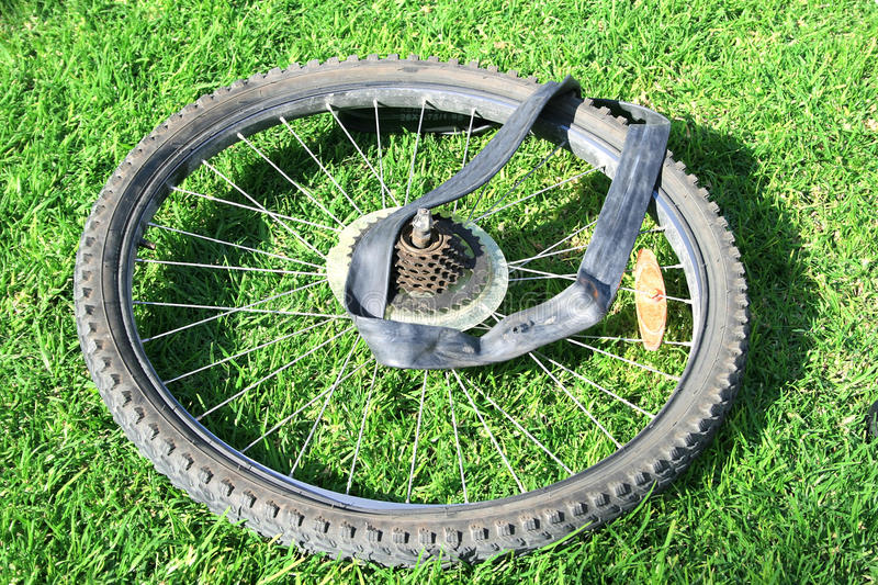 Bike tire. Bicycle wheel on green grass royalty free stock photography
