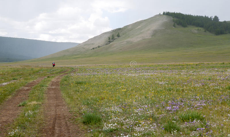 Bike Touring In Northern Mongolia Stock Image