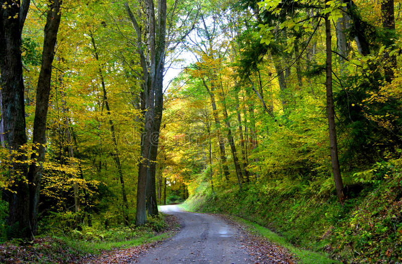 Download Bike trail stock image. Image of quite, fall, road, breathtaking - 11010767