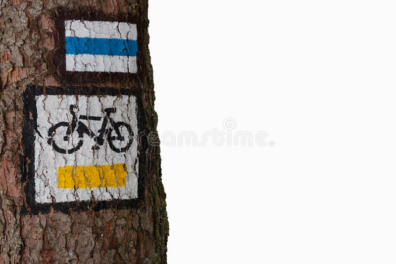 Download Bike trail stock image. Image of walking, biking, tree - 27393381