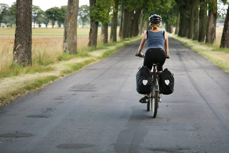 Download Bike trip stock image. Image of bike, load, bags, field - 8015425