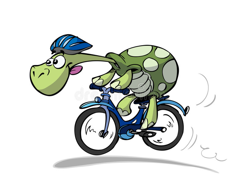 Bike turtle. Cool sportive cycling turtle in nature