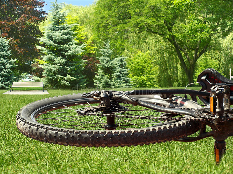 Download Bike wheel stock image. Image of gear, parked, equipment - 20427845
