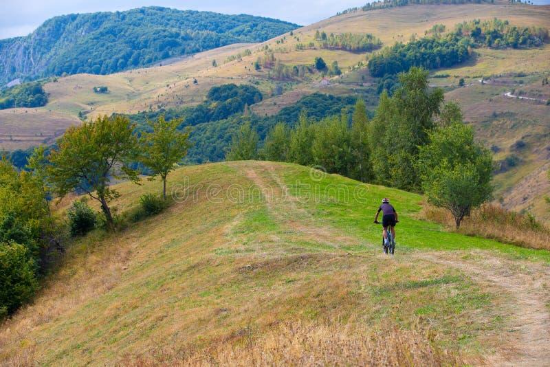 Biker rides on rural road in summer stock images