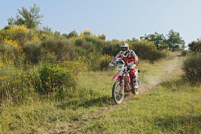 Biker riding enduro motorcycle Beta RR 400 royalty free stock image