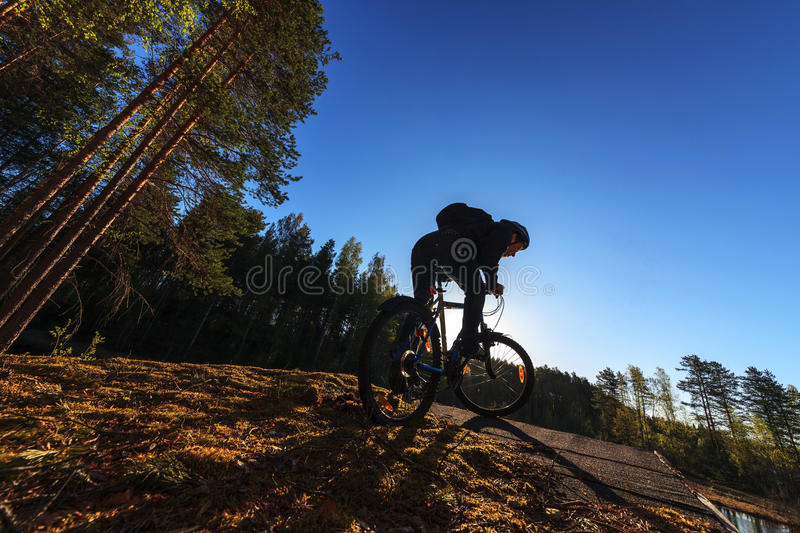 Biker Riding In Forest Stock Photos