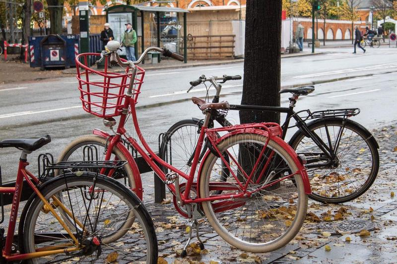 Bikes in rain. Red and black bikes standing on the street in rainy autumn weather royalty free stock photos