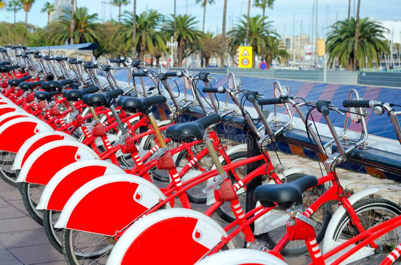 Bikes on the waterfront in Barcelona. Group of red bikes for rent in Barcelona, Spain stock photo