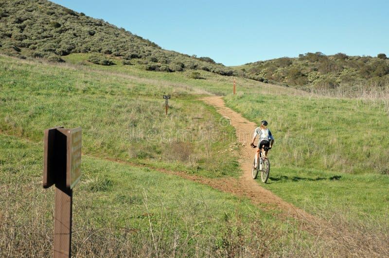 Download Biking γυναίκα βουνών στοκ εικόνα. εικόνα από καλιφόρνια - 53863