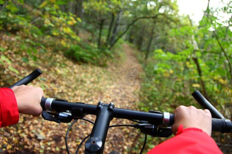 biking immagini stock