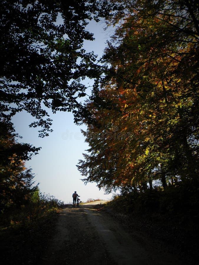 Biking in Apuseni-Bergen, Transsylvanië stock afbeelding