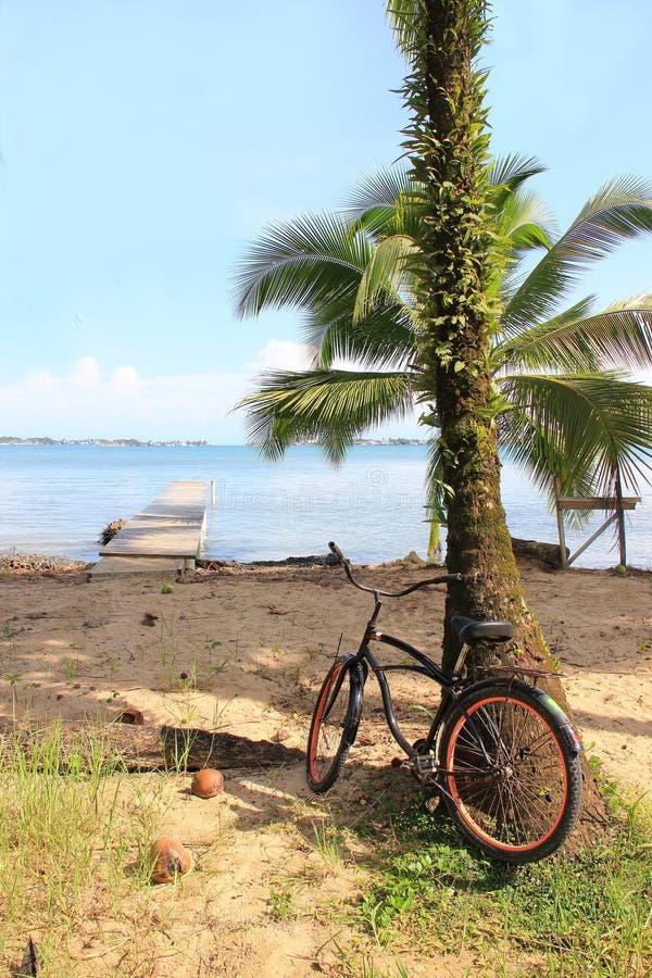 Biking in Bocas royalty-vrije stock foto