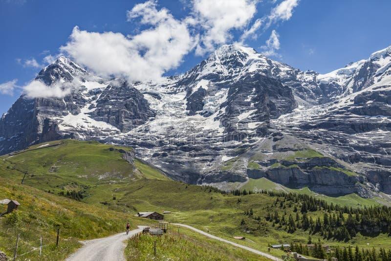 Biking de montanha em Grindelwald, switzerland fotografia de stock royalty free