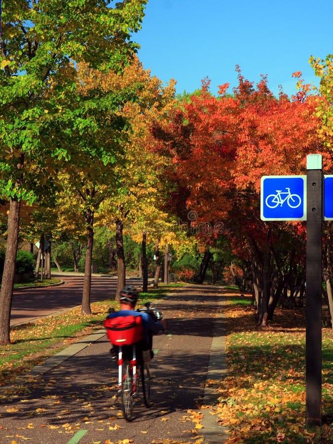 Biking in Minneapolis. In fall season stock images