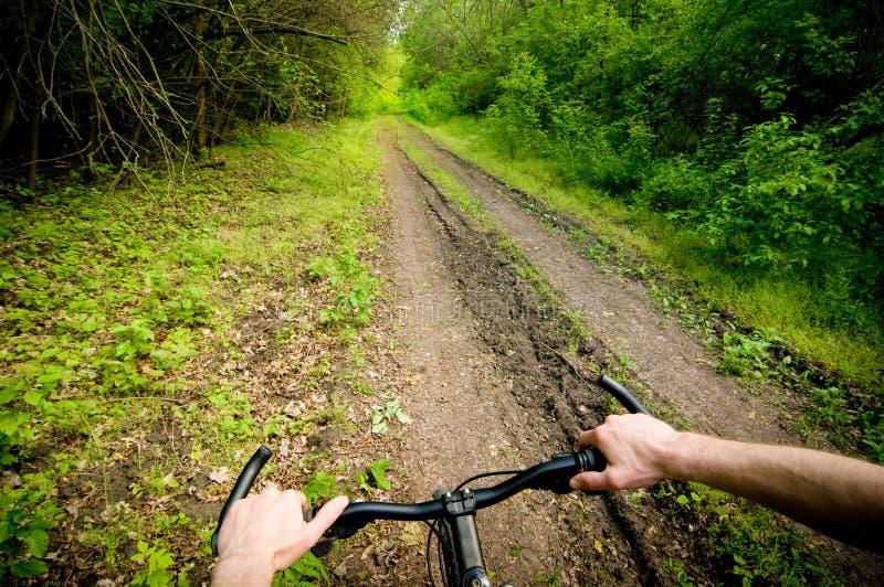 Biking op bosweg stock fotografie