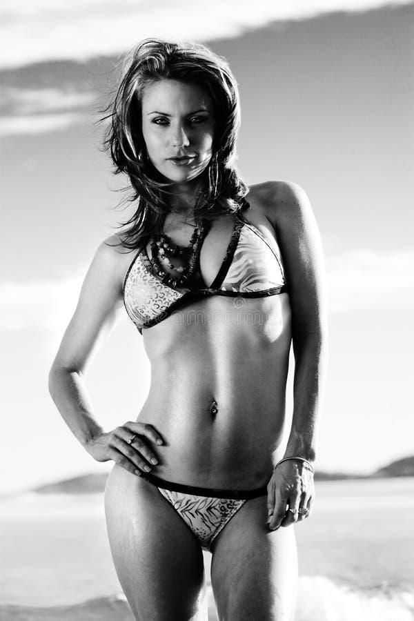 Download Bikini babe stock photo. Image of bikini, person, glamour - 7637444