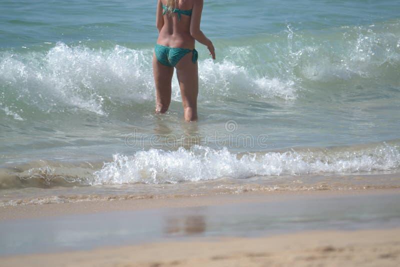 Bikini, corpo, cinghia, costume da bagno, biancheria intima, mare, oceano, erotica immagine stock libera da diritti