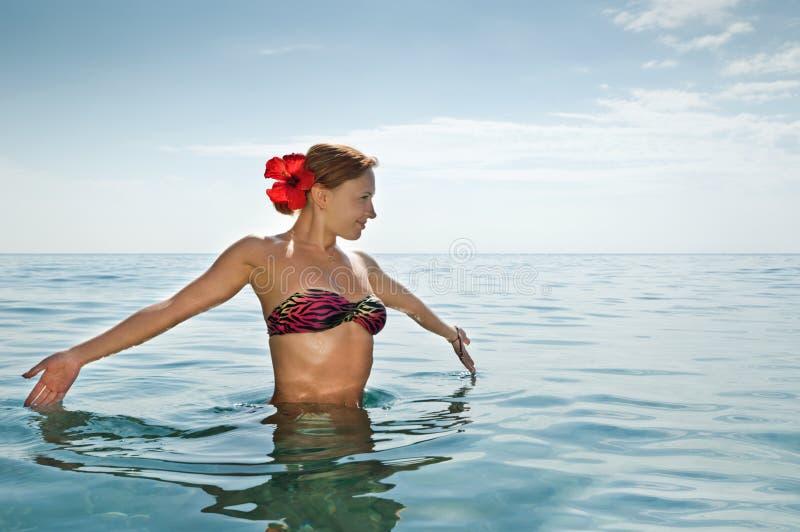 bikini dziewczyny czerwony seksowny target323_0_ obraz stock