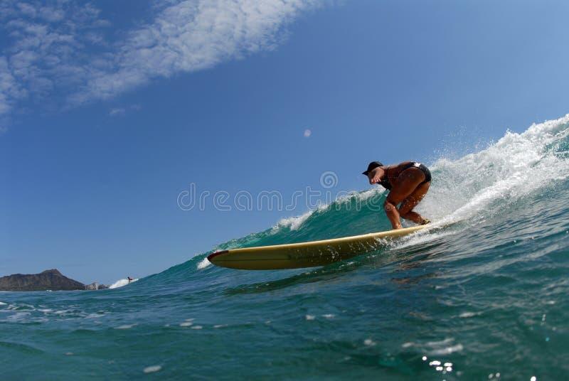 A bikini longboard surfer royalty free stock photo