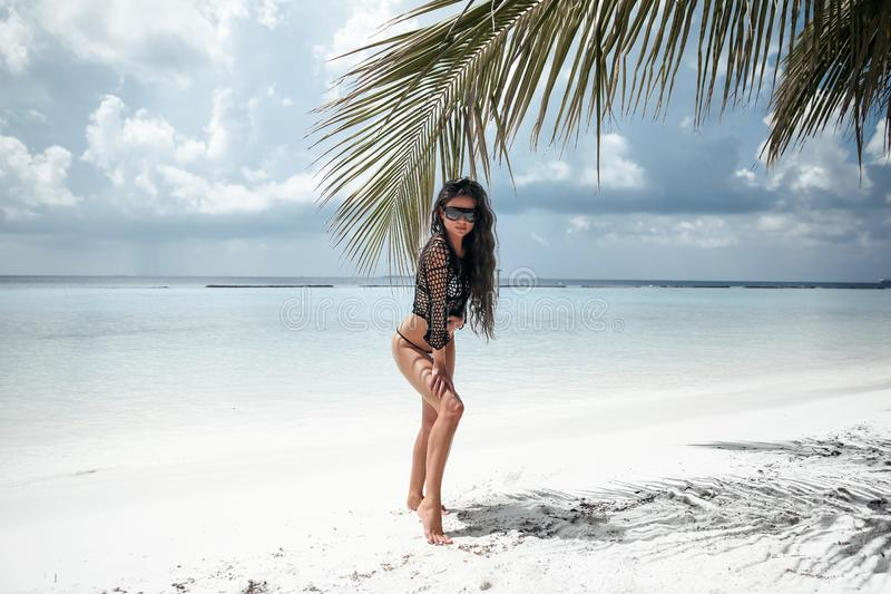 Bikini Model posing on white sand by palm. Brunette on tropical beach vacation. Sexy slim girl in black swimwear. Maldives Summer stock image