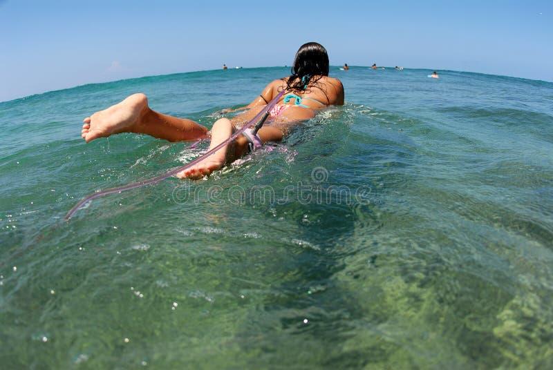 Download Bikini Surfer Girl Paddling Ou Stock Image - Image: 2591861