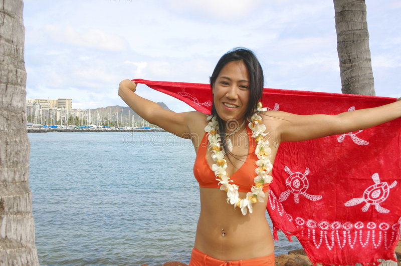 Download Bikiniflickahawaiibo arkivfoto. Bild av destination, semester - 36768